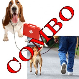 canine first aid dog walker combo courses