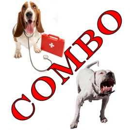 dog behaviour and canine first aid course combo