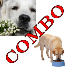 dog health nutrition canine holistic health comboo