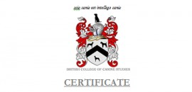 Certificate Courses