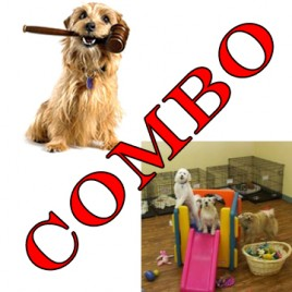 complete canine care and dog law course combo