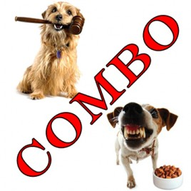 dog law and dog behaviour practitioner combo courses
