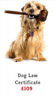 dog law certificate slide
