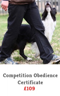 competitive obedience slide