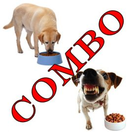 canine health and nutrition and advanced dog behaviour combo