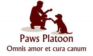 Paws Patrol Dog Walking Services