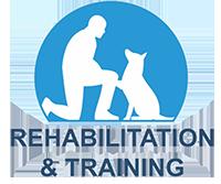 Rehabilitation and Training